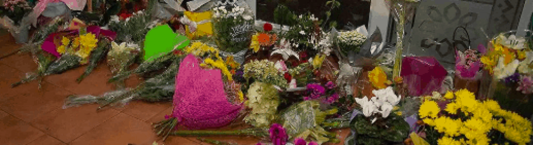 Auburn Senior Fellows Respond To ChristChurch Attack: Broken Hearted, But Won't Lose Hope