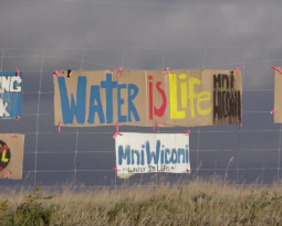 This Thanksgiving, Tell Your Family and Friends About Standing Rock